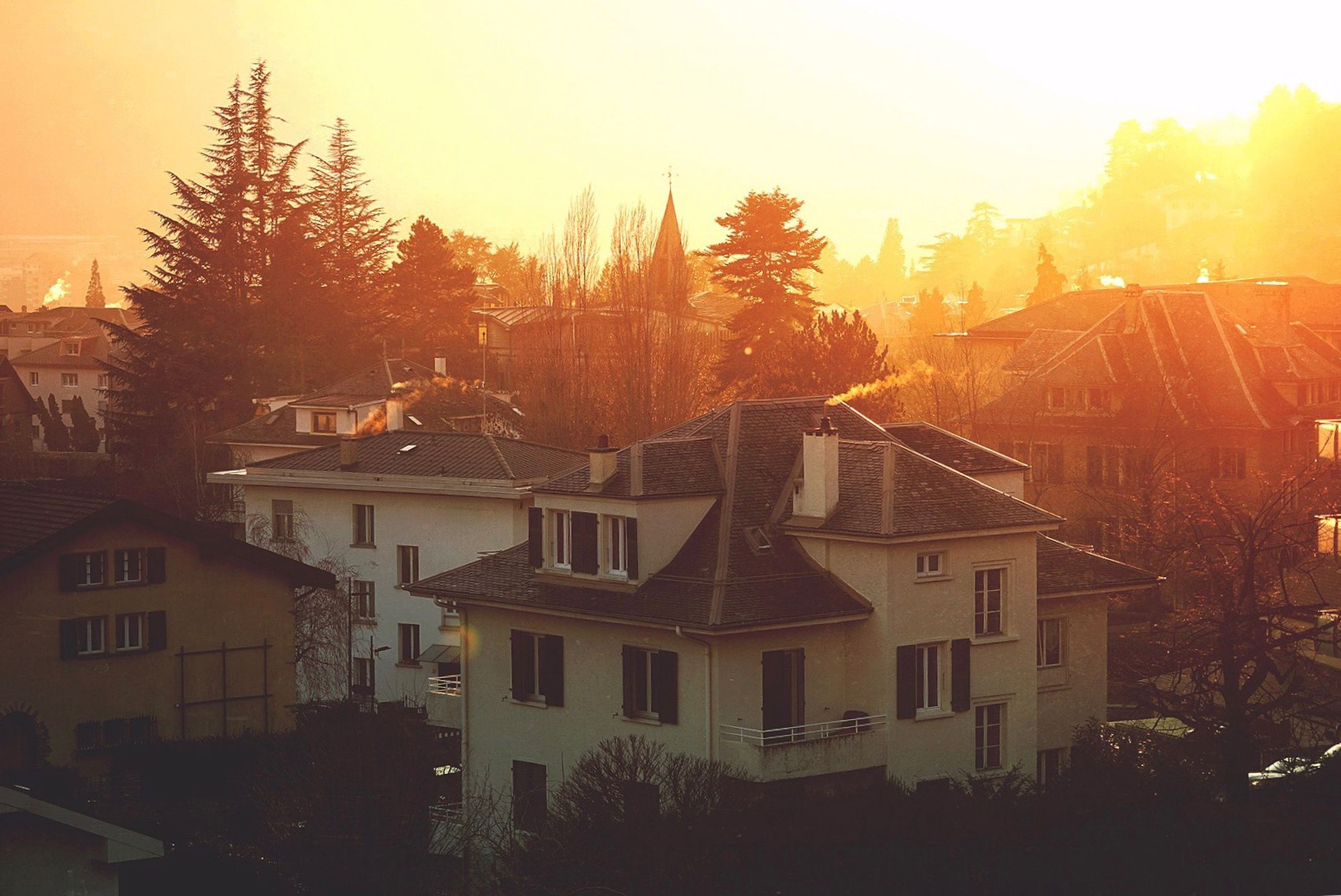 building exterior, architecture, tree, built structure, plant, building, sky, nature, residential district, no people, sunset, house, city, high angle view, sunlight, outdoors, orange color, sun, day, roof, townscape