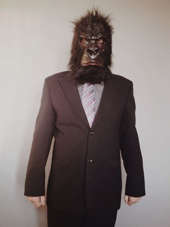 New business headshot. I hope they invite me to the job interview. Business Job Interview Suit Gorilla