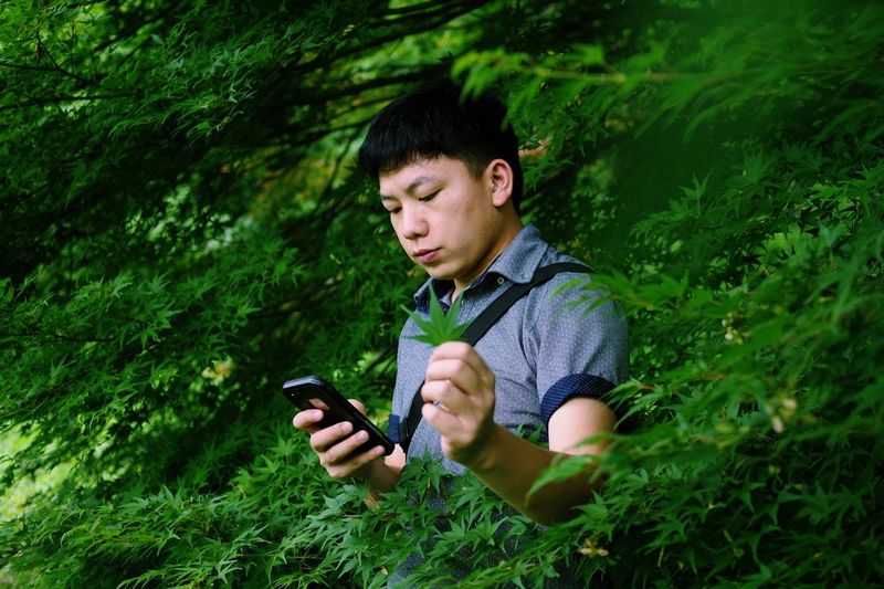 Man using mobile phone amidst plants