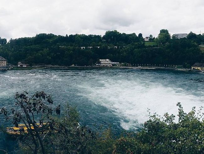 Great views at the Rheinfall✌ VSCO Vscocam Vscobeau Vsconature Shotsofresh Vscovisuals Visualsoflife Vscohungary 9vaga_skyandviews9 Vscosweden Vscorussia Vscorus Forest Focalshots Mik Tv_landscapes Liveauthentic 9vaga_dailytheme9 Rsa_ladies Soundofcountry Landscape Tv_travel Tv_living Transfer_visions Transfer_visions_nm2 myswitzerland hiyapapayaphotoaday wildernessculture moodysnap