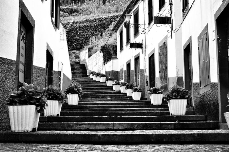 Success is not a doorway. It's a stairway. Built Structure Architecture Building Exterior The Way Forward In A Row Outdoors Day No People Madeira Island Madeira Town Tradition Village Portugal