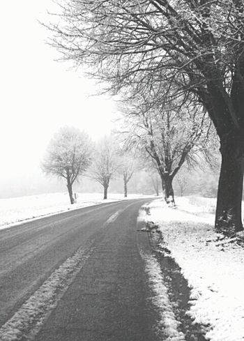 Taking Photos Nature Good Morning Morning Belgium. Belgique. Belgie. Belgien. Etc. EyeEm Best Shots - Nature Blackandwhite Arbre Snow On The Road Snow Road Snow Day Winter 2016 Samsungphotography Samsunggalaxycore Samsungphoto