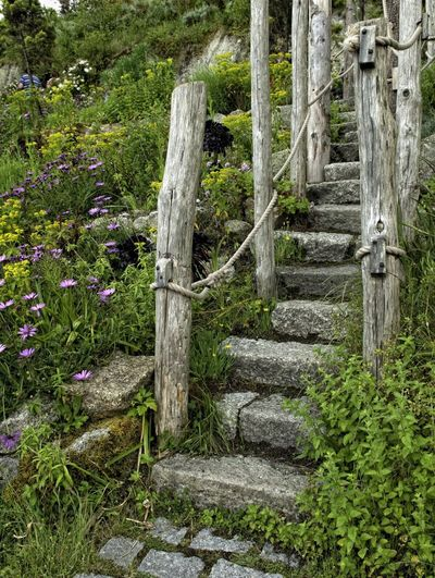 Eden project Cornwall Landscape_photography Eden Garden Photography Steps And Staircases Days Out