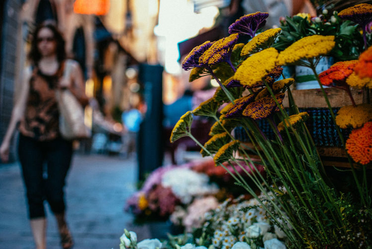 Fresh Flowers At Store In City