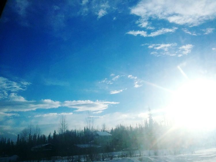Just driving from Soldotna on Sterling Highway going home. Sky Tree Beauty In Nature Idyllic Landscape Nature Scenics Tranquility Outdoors No People Sunset Cloud - Sky Snow Day The City Light