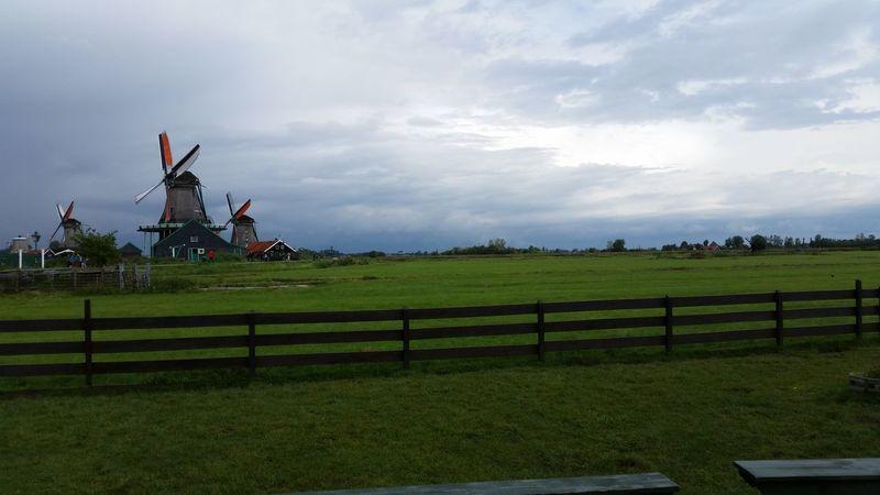 Calm Cloud - Sky Field Grass Netherlands Holland Perfection Windmill Zaanseschans Zaanseschanswindmill