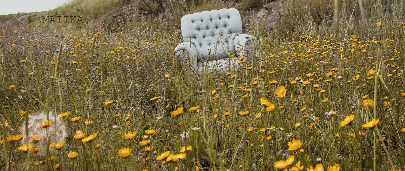From the Solitude serie. Plant Flower Head Pollen Nature Petal Beauty Botany Fragility Flower No People Softness Beauty In Nature Stamen Dandelion Abandoned Things Abandoned And Beautiful Abandoned Chair Abandoned Sofa