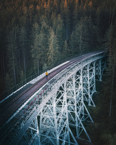 Aerial view of woman standing on railroad track by trees in forest
