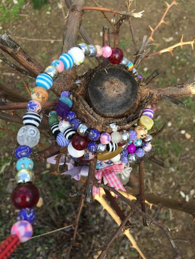 pearl on three 🌲🔵🔴⚪️ Plant Grass Garden Threes Three Jewelry Pearl Hanging Outdoors Day No People Close-up Multi Colored Spirituality Flower Fragility Nature