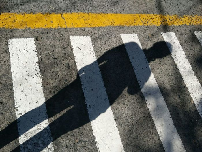 self portrait, mobile shot, inside the university. Road Marking Striped Asphalt Shadow Yellow Day Outdoors