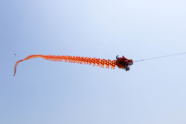A 100 metres long dragon shaped kite Kite Dragon Daily Life Sky