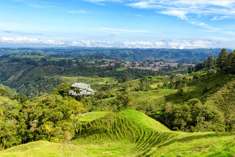 View of Salento, Colombia. City Cloud Colombia Farm Hiking Palm Pasture Quindío Rural Tree Trip Andean Cauca Coffe Colombian  Countryside Forest Hike Jeep Landscape Quindío Salento Tolima Trek Wax