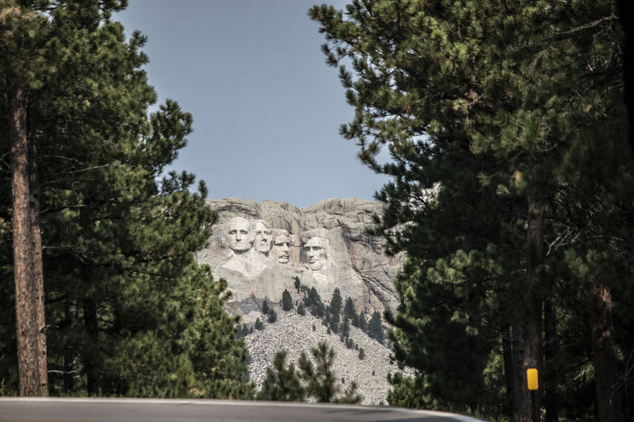 Mount Rushmore Mount Rushmore National Memorial Art And Craft Communication Craft Creativity Day Human Representation Nature No People Outdoors Plant Representation Sculpture Sky Solid Southdakota Text Tourism Tranquility Travel Travel Destinations Tree
