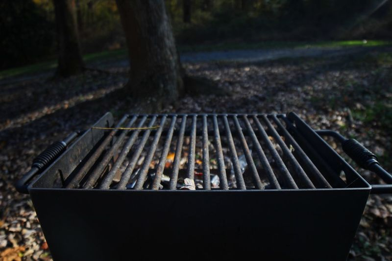 Outdoor camping grill Camping Outdoor Barbecue Nature Day Burning Barbecue Grill Tree No People Metal Focus On Foreground Land Outdoors Plant Close-up Field Park Park - Man Made Space Preparation