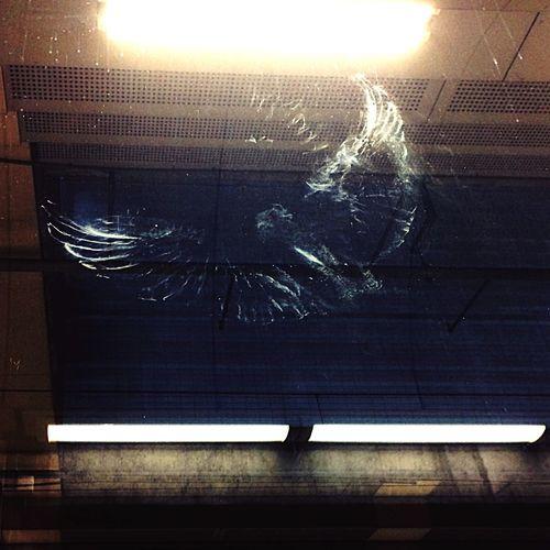 Glitch Bird
