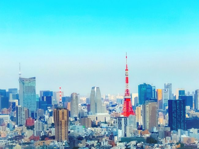 Tokyo skyline Architecture Skyscraper City Building Exterior Tower Cityscape Built Structure Tall - High Travel Destinations Modern Urban Skyline Clear Sky Day Tokyo Street Photography Tokyo Tower Cityscape Urban Geometry Urbab Landscape