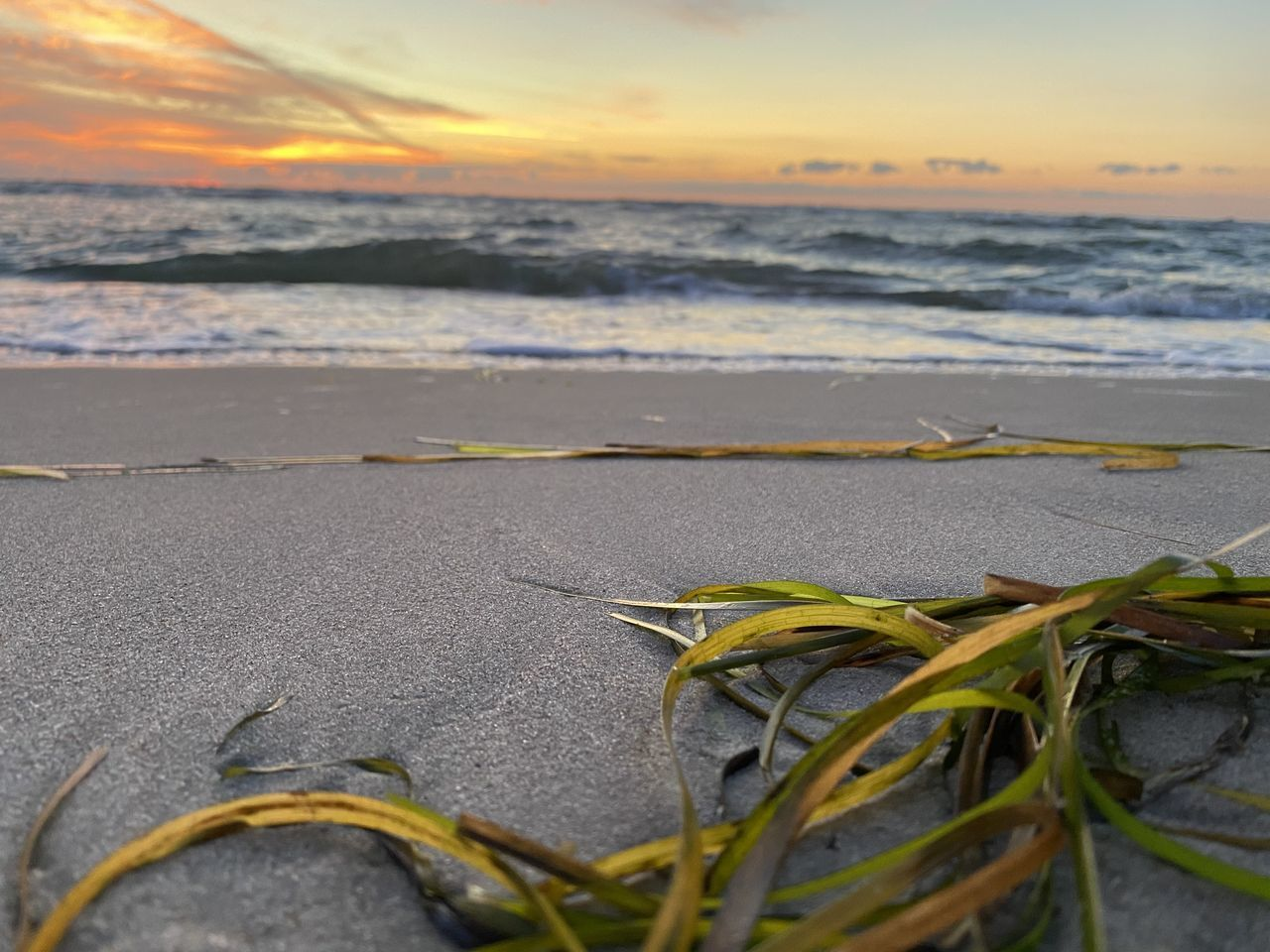 CLOSE-UP OF SEA SHORE AGAINST SUNSET SKY