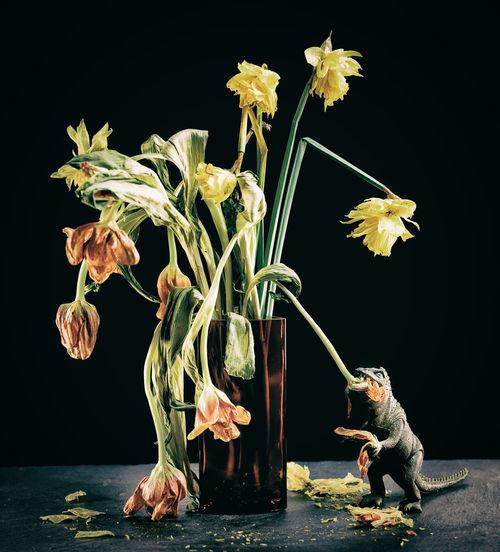 Dino Dinosaur Narzissen Still Life Photography StillLifePhotography Today's Hot Look Verfall Aussterben Blumenpracht🌺🍃 Blumenstrauß Flower Flowerporn Nature_collection Sterben Still Life Stilleben Studio Shot Tulip Verblüht The Creative - 2018 EyeEm Awards