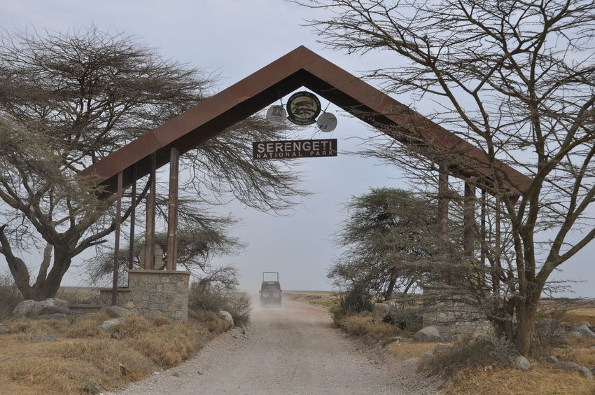 Serengeti National Park entrance EyeEmNewHere Serengeti National Park Tanzania Lonely Road Nature Non-urban Scene Outdoors Remote Safari Lost In The Landscape