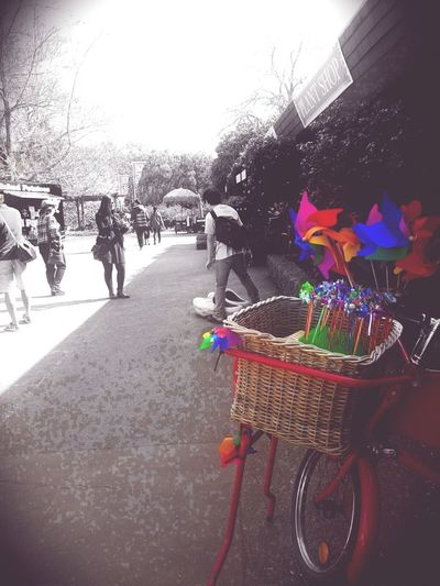 Whirligigs Colorsplash Wind Stationarybike Slow Life Wind Spinners Small Town Dutch Dreamscapes Tourist
