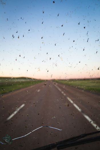 Dead bugs on a cracked windshield. Driving Bugs Car Insurance Comprehensive Driving In My Car Hazard Highway Highways Insects  Insurance Road Runway Sunset Transportation Visibility Windshield