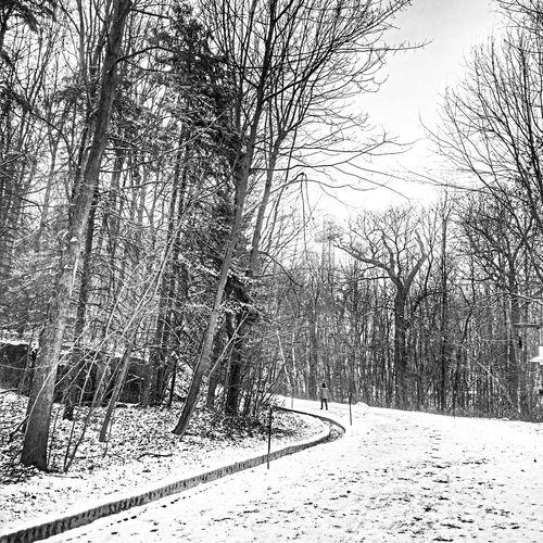 Streetphoto_bw Bw_collection Blackandwhite Snow ❄