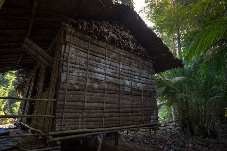 Traditional house at Endau Rompin National Park, is one of the main attraction visiting this remote area of the rain-forest. Aborigines Endau Rompin Rain Forest Home House Indegenous Poeple National Park Organic Peace And Quiet Rattan Rural Tourist Attraction  Traditional Tranquil Scene Travel Destinations Wood