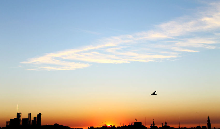Atmospheric Mood Blue Sky City Cloud Cloud - Sky Colours Colours Of Nature Composition Nature Nature Photography Perspective Pure Relaxing Seagull Silhouette Sky Skyscape Sun Sunset Sunset #sun #clouds #skylovers #sky #nature #beautifulinnature #naturalbeauty #photography #landscape View