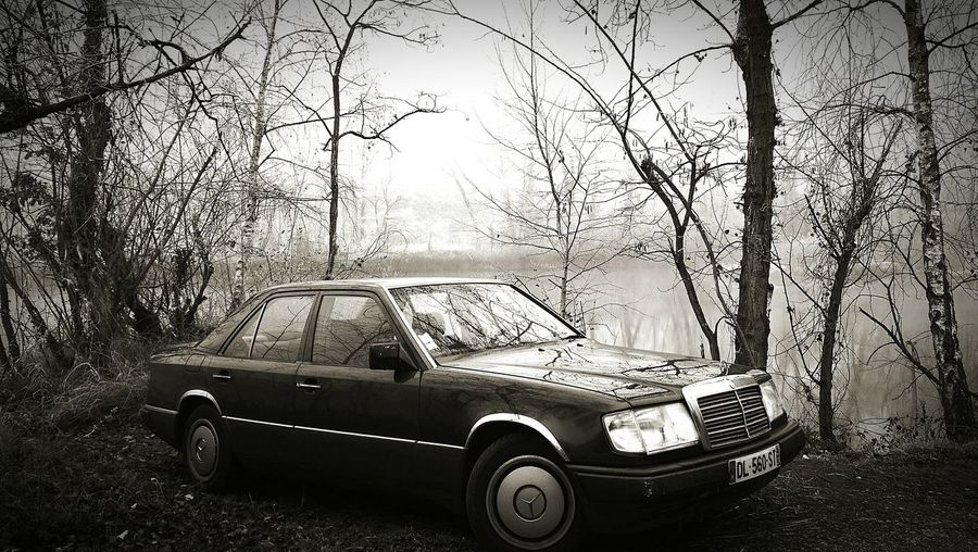 Starline One - MB W124 it's Car No People Nature Day Outdoors Old-fashioned Frozen Nature Luxury winter