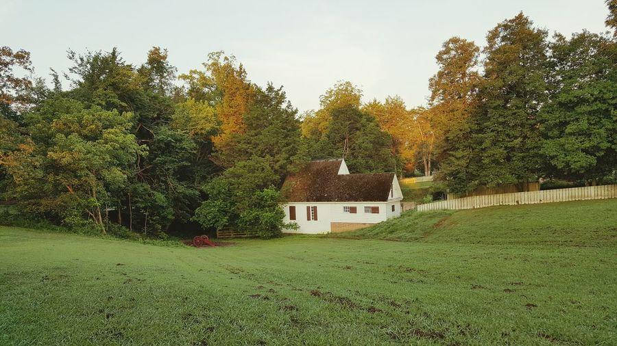 TakeoverContrast Colonial Williamsburg Virginia House Green Grass Field Landscape Buy New GuramsEye