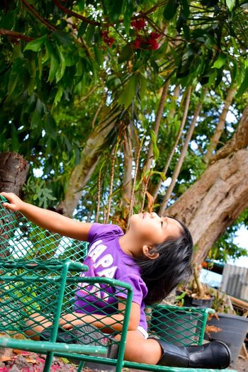 Mylillady Child Tree One Girl Only One Person Children Only Girls Casual Clothing Outdoors Climbing Day Low Angle View People Growth Smiling Nature The Portraitist - 2017 EyeEm Awards