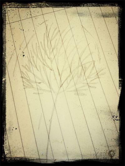 , Likee My Pic : )