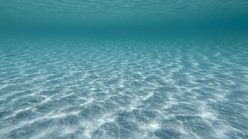 Beauty In Nature Blue Clean Day Marine Motion Natural Pattern Nature No People Outdoors Rippled Scenics - Nature Sea Sea Life Tranquil Scene Tranquility Turquoise Colored UnderSea Underwater Water Waterfront