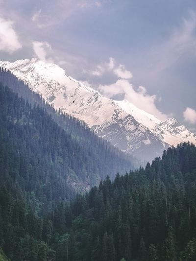 White crown Tree Mountain Snow Cold Temperature Winter Scenics - Nature Beauty In Nature Plant Tranquility Sky Tranquil Scene Environment Cloud - Sky Snowcapped Mountain No People Nature Forest Day Pine Tree Mountain Range