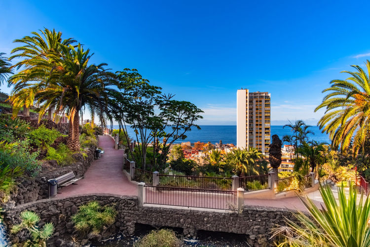 Puerto de la Cruz in the sign of plants and flowers. This week, from October 15 to 21, 2018, the town of Puerto de la Cruz, located on the north coast of Tenerife, is characterized by flowers, flowers and plants. Guided tours through gardens, lectures and botany events take place all over the city. This one-week event is about the flora of the Canary Islands, especially Tenerife. What few know: Here on the island there are almost 500 only on Tenerife occurring and unadulterated plants. Today on the second day I visited the extensive parks on the mountain Taoro. I photographed these pictures of the vegetation and the view of the city today on the 16th of October. More pictures and information will follow later this week. Tenerife Teneriffa Puerto De La Cruz Taoro Park Taoro Reportage Park Plants Flowers Garden Botany Flower Travel Travel Destinations Touristic Palms Traveling Travel Photography Touristic Destination Landscape Landscape_photography Bel Air Skyscraper Luxury Growth
