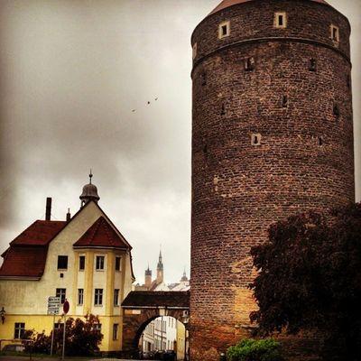 Home sweet home! Freiberg Saxony Sachsen Ig_deutschland Ig_germany Insta_international Insta_europe RainyDay