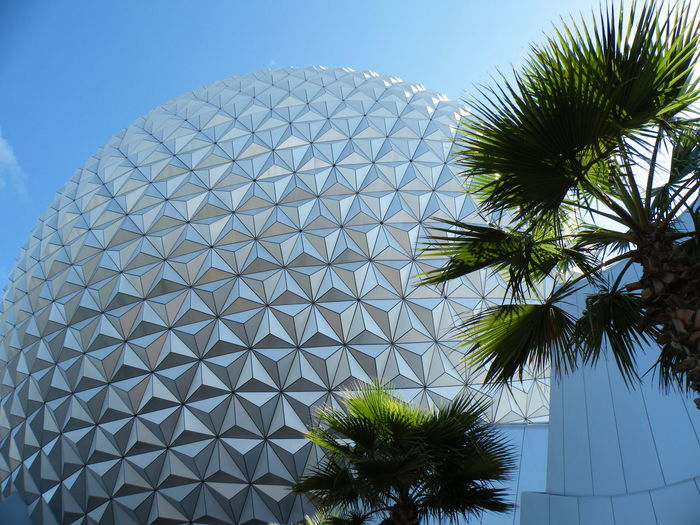 Architecture Built Structure Clear Sky Day Epcot Disney World Low Angle View No People Outdoors Palm Tree Sky