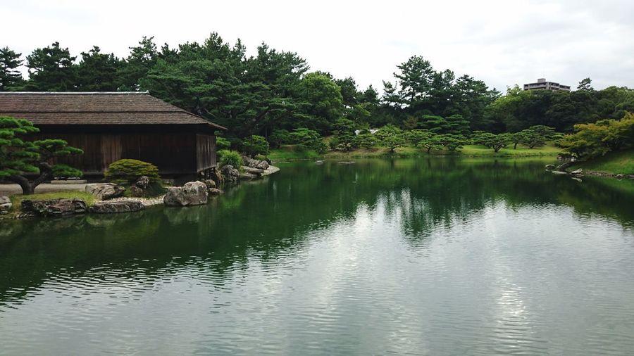 栗林公園 高松 Takamatsu Ritsurin Garden Pond Green