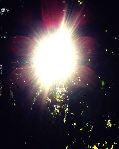 Estrella solar Goodvibes Goodvibes🌾🌼✌️ GoodVibration Buenasvibraciones