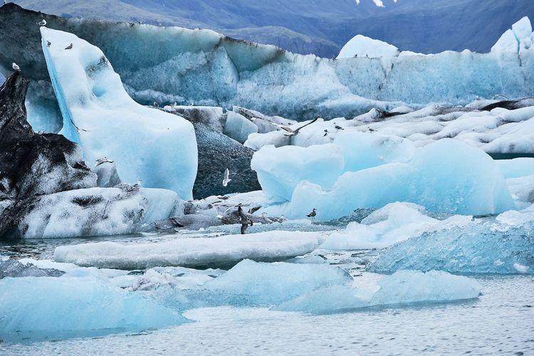 Iceland jökulsarlon glacierlagoon