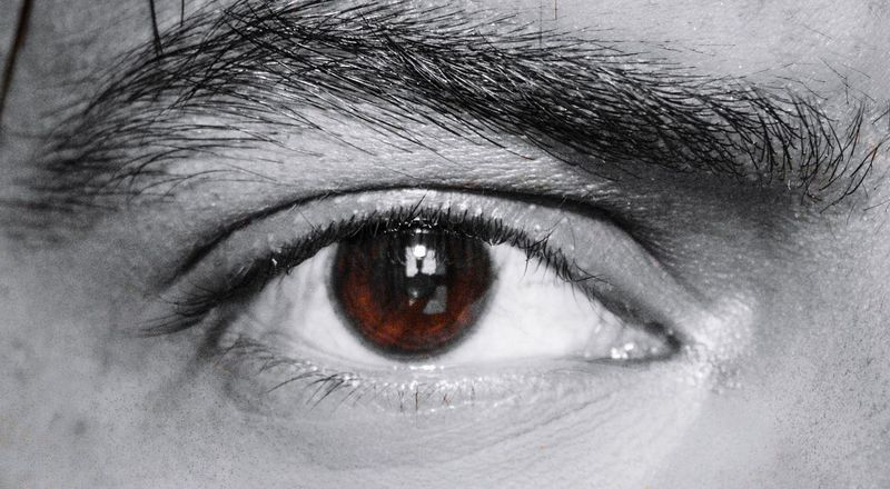Eye with a Life Vision in it Canonphotography Canon 550d Canon 50mm F1.8 II Eyeball Eyelash Eyesight Human Eye Portrait Iris - Eye Eyebrow Sensory Perception Looking At Camera Full Frame Eye The Creative - 2018 EyeEm Awards