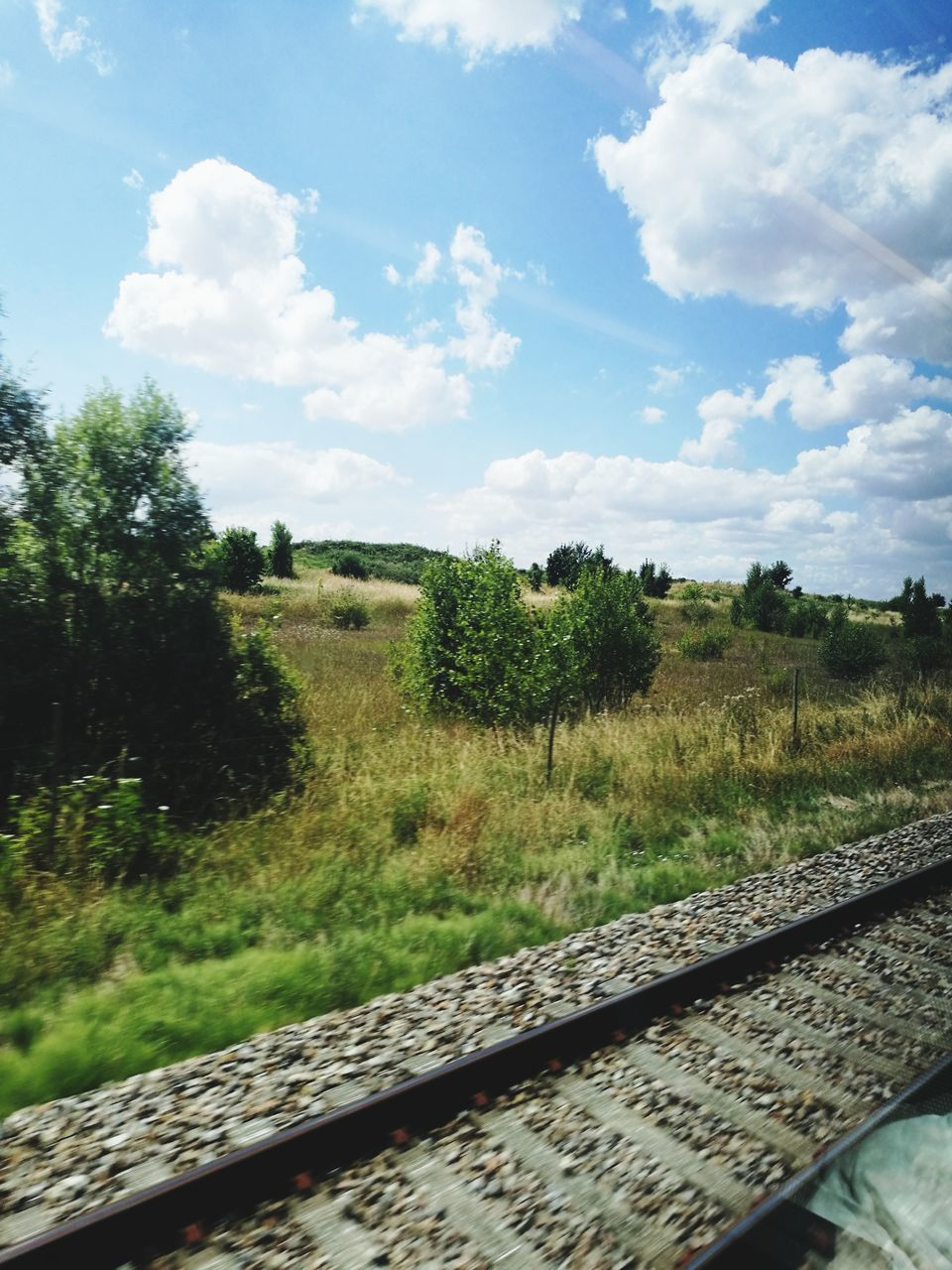 sky, track, rail transportation, railroad track, plant, tree, cloud - sky, transportation, nature, environment, day, land, landscape, grass, no people, mode of transportation, field, growth, non-urban scene, outdoors