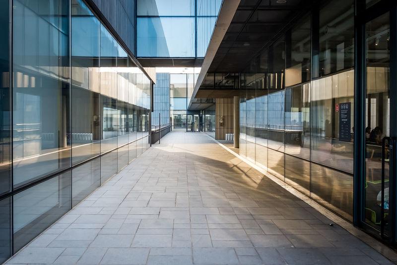 Road Amidst Modern Buildings