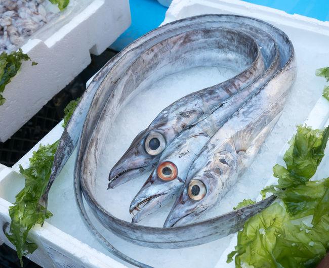 Bandiera Fish Flag Food Market Nature Pesce Three