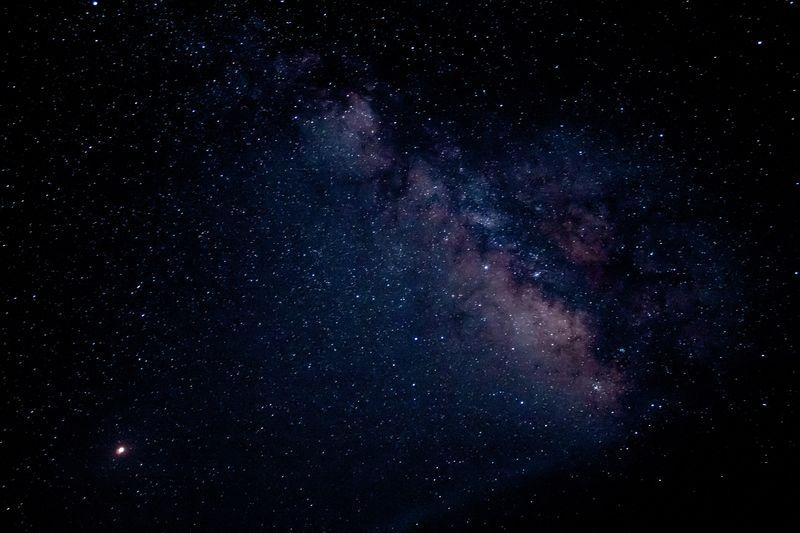 🐮🍼 Star -