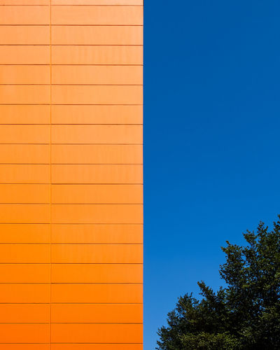 Wallfeature Blue No People Copy Space Wall - Building Feature Minimalism Minimalist Photography  Fujix_berlin Ralfpollack_fotografie Tree Architecture Plant Sky Nature Built Structure Building Exterior Clear Sky Day Outdoors Building Pattern Orange Color Sunlight