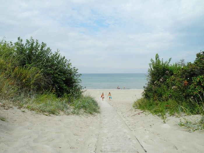 Dronningmølle Beach at the Kattegat Sea in Denmark - Sea Beach Horizon Over Water Water Tree Sand Vacations Ocean Plant Tranquil Scene Coastline Tranquility Calm Sky Summer Footpath Group Of People Tourism Nature Seascape Dronningmølle Dronningmølle Beach Kattegat Denmark