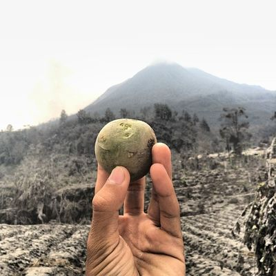 Pottato -- Sigarang-Garang Village -- Tanah Karo Instanusantara Instanusantaramedan