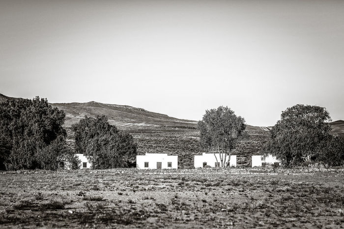 Karoo | high res image available Architecture Built Structure Clear Sky Countryside Dwelling Houses Landscape Mountain Nature No People Non Urban Scene Non-urban Scene Outdoors Remote Rural Scene Scenics Small Houses Tranquility Tree Veld Village