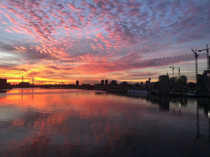 Rotterdam Sky